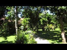 Pokój w Kucie na Bali (Komala Indah II) - http://bali-traveller.com/pokoj-w-kucie-na-bali-komala-indah-ii/