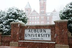 Samford in the snow