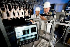 Proposals shall aim at developing a research and innovation platform for collaboration and coordination across food safety stakeholders in Europe. Safety Inspection, Usda Food, English, Food Safety, Proposals, Engineers, Photo Illustration, Agriculture, 2 In