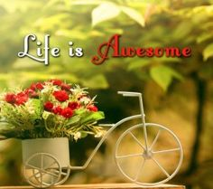 Simple life hd wallpaper for laptop ,wide,wallpapers,images,pictute,photos