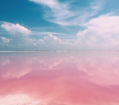 Naturally Pink Lagoon in Mexico Is Like a Real-Life Fairy Tale Dreamscape