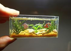 Miniature Dollhouse Miniature miniature furniture by shopKristi