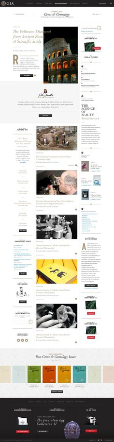 Detailed and neat web layout.: