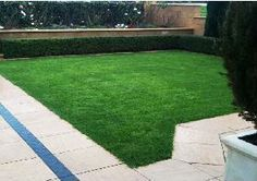 Establishes and covers quickly, handles tough conditions, drought tolerant, Improved Turf Type Perennial Ryegrass Lawn Seed, Drought Tolerant, Perennials, Stepping Stones, Emerald, Seeds, Outdoor Decor, Garden, Garten