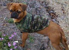 Camo Doggie Sweater - Media - Crochet Me