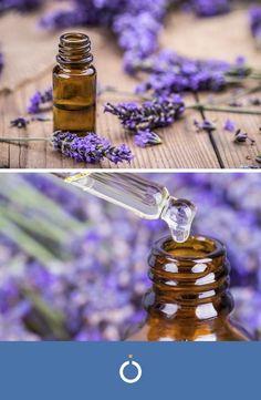Olio do lavanda Diy Natural Beauty Recipes, Diy Beauty, Perfume Oils, Medicinal Plants, Kraut, Essential Oils, Hobby, Health Club, Doterra