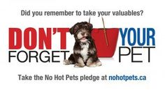 #NoHotPets See videos and take the pledge. It's getting hot out! #Pets