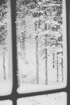 Falling Snow | Winter
