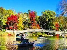 "t_nyc14: ""Another Great Autumn Day..... #centralpark #bowbridge #bridgeshot # #parklife #pond #rowboat #fallcolors #citylife #ny #nyc #nypix #seeyourcity #newyorkcity  #manhattan #potd #wow_america #mycity_life #nexlevelpix #icapture_nyc #just_newyork #Fall2015 #loves_nyc #made_in_ny #nycdotgram #nbc4ny #abc7ny #ispyny"""