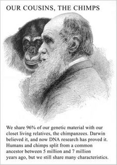 Darwin laid the groundwork for evolution, but wrestled with these ideas for many years before publishing because of issues of religion and faith.