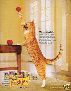 Purina Friskies magazine advertisement (2004)