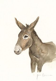 Liscannor Donkey Irish Art, Clear Bags, Wildlife Art, Limited Edition Prints, Prints For Sale, Donkey, Watercolour Painting, Giclee Print, Fine Art Prints