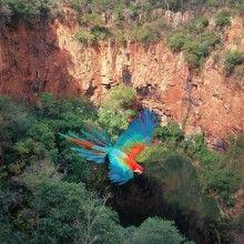 De janeiro a dezembro, a melhor época para visitar 30 destinos no Brasil e no mundo