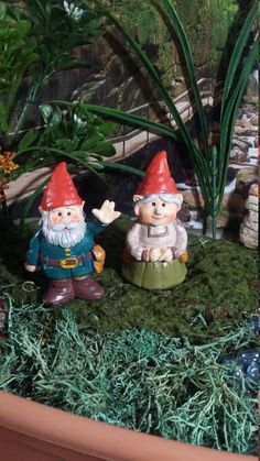 Fairy Garden Miniature Garden Gnomes for your Fairy Garden, Ma & Pa Gnomes, Miniature Gnomes, Gnome Couple, Wedding/Anniversary Cake Toppers by BarbarasBoutiqueShop on Etsy https://www.etsy.com/listing/483033392/fairy-garden-miniature-garden-gnomes-for