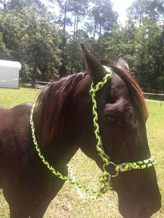 1000 images about horse stuff on pinterest horse for Cool things made out of horseshoes