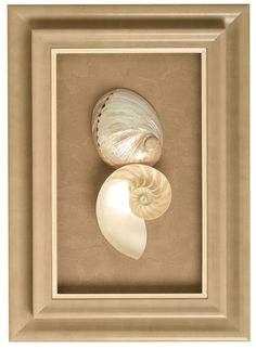 Surprise Your Valentine - The Great Frame Up #customframing #gift #souvenir #travel #trip #beach #shells #keepsake