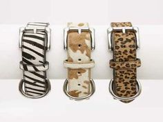Dogue Cat Collars - Assorted Sizes and Prices