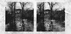 Muíño. Mondoñedo, Lugo. Ca. 1910. Imaxe estereoscópica. Placa de cristal con emulsión de bromuro lento e clorobromuro rápido. 8,9 x 17,8 cm.