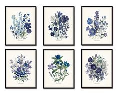Fleurs de Jardin Flowers of the Garden Botanical Print Set No. 6 - Fine Art Giclee Prints  This print set features 6 antique botanical illustrations which have been digitally restored, enhanced and added to a light neutral background. Beautiful shades of blue, violet and periwinkle work together to create a timeless print set to be enjoyed for many years to come.  ***Frames are for display purposes and are not included.  SIZES -----------------------------  Available sizes & prices are di...
