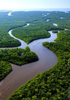 La Floride, sous le soleil : Les Everglades en airboat (Everglades, Florida, U.S.A.)