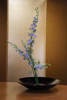 Ikebana Flower Arrangement | ... Travels: Ritsumeikan Flower Arrangement / Ikebana (生け花) Class