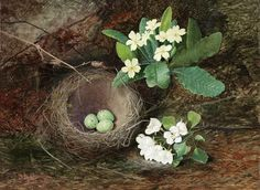 Thrushes Nest 1862 by English Painter John Atkinson Grimshaw 1836-1893   http://arts-lubies.blogspot.co.nz/2013/03/renouveau.html