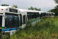 These buses in Ontario were once used to shuttle city travelers to their various destinations, but they now serve as a unique property fence...