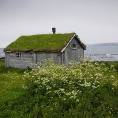 Norway - small rustic building by the water, grass or moss on the roof