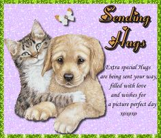 Cute Hug, Thank You Wishes, Tight Hug, Sending Hugs, Good Night Sweet Dreams, Warm Hug, Cute Cats And Dogs, Feeling Special, Name Cards