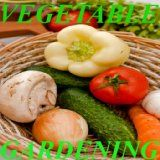 Buy a Vegetable Gardening / http://thesenews.com/vegetable-gardening/