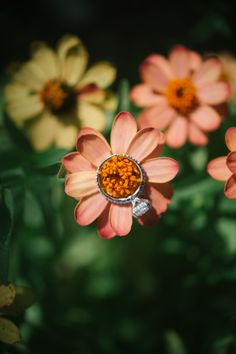 Gorgeous ring picture from a #FearringtonWedding #FearringtonVillage | Photographed by @krystalkast #KrystalKastPhotography