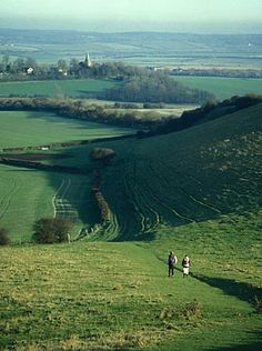 There's nothing like a good walk in the english countryside to lift the spirits.  (Time Out's books of country walks near London are fab)