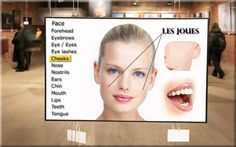 Learn French with Ouino: Le visage (The face)