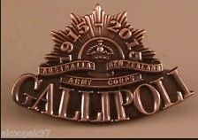 Gallipoli 1915 2015 Lapel Badge Commemorating 100 Years Since Landing AT Anzac Priscilla Barnes, Anzac Day, Fallen Heroes, Lest We Forget, Irish Celtic, Badge, The 100, Landing, Ebay