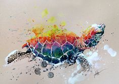 Turtle 2 watercolour with gouache A3 original by tilentiart