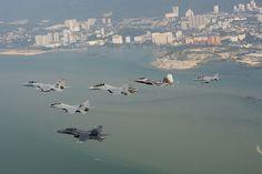 Unique formation: F-15, F-22, Su-30, Mig-29N, BAE Hawk and F/A-18 flying together