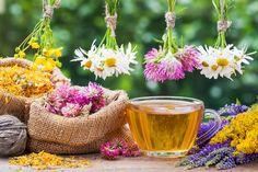 Our CBD Herbal Tea Blends are the perfect way to enjoy your CBD extract. Just bring fresh water to a boil and pour over a bag of Geovana's Hemp Tea blend. Close your eyes and breathe deeply, while bringing positive thoughts to mind. Fall Allergies, Seasonal Allergies, Herbs For Energy, Cbd Extract, Dry Plants, Tea Blends, Healing Herbs, Pranayama, Herbal Tea