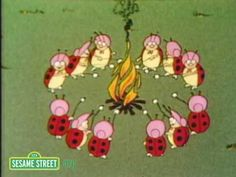 If you're watching videos with your preschooler and would like to do so in a safe, child-friendly environment, please join us at http://www.sesamestreet.org    Twelve ladybugs have a picnic.    Sesame Street is a production of Sesame Workshop, a nonprofit educational organization which also produces Pinky Dinky Doo, The Electric Company, and oth...
