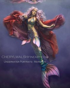 "CW Fine Art (@cherylwalshfineart) on Instagram: ""Another gorgeous mermaid :) LOVE these new Mythic mermaid tails by Finfolk Productions Bryn Roberts…"""