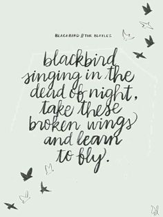 Blackbird singing in the dead of night 〰♠️