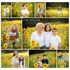 Sunflowers! - www.lorimercerphotography.com
