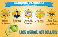 Garcinia Cambogia Extract is the latest and the fastest fat burner this date. Since DR. OZ introduced this miracle fat buster on his popular TV show, everybody now wants to get a piece of it. Most common question we get is, does Garcinia Cambogia Work? Read the Garcinia Cambogia reviews and find out.