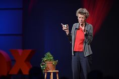 Are we morally obligated to appreciate plants for their own sake, regardless of what they do for us? Yes, says Florianne Koechlin, one of the members of The Swiss Federal Ethics Committee on Non-Hu...