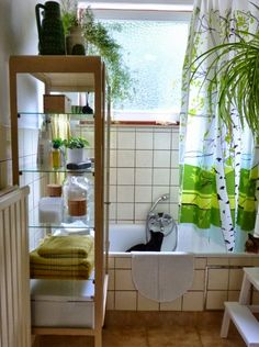 Bathroom: The Home of.... June DotBe
