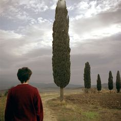 reinopin: Au fil des jours, Montepulciano, 2000 © Patrick Taberna