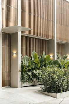 inspiration zone Condesa Mexico City, Living In Mexico City, Lattice Screen, Best Boutique Hotels, Patio Interior, Interior Design, Urban Fabric, Facade Design, City Architecture