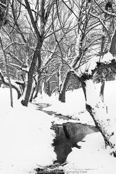 Cold Montana Winter - Photo by David Winn Photography