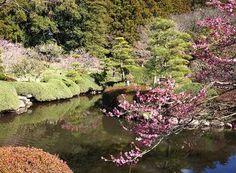 L'un des plus beau jardin japonais, Kairaku-en
