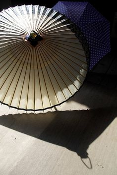 Japanese Umbrellas have a quality I really enjoy. Maybe it's because it's very like a fan, and there's a continuation of the style.