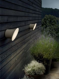 lights! love them for modern outdoors.